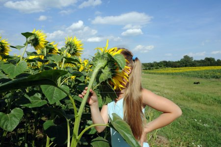 Photo for An image of a girl smelling a sunflower - Royalty Free Image