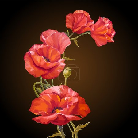 Illustration for Oil painting. Card with poppies flowers on darck background. - Royalty Free Image