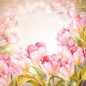 Tulips flowers background