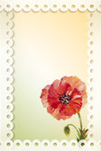 Poppies Summer flowers invitation template card
