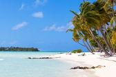 Tropical beach at bora bora