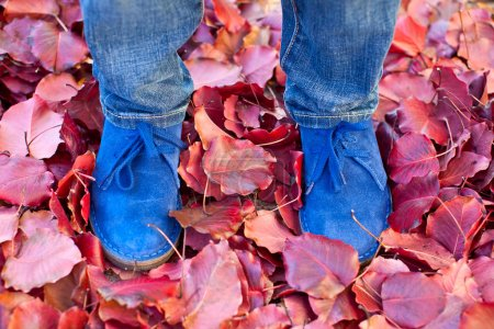 suede boots in autumn leaves