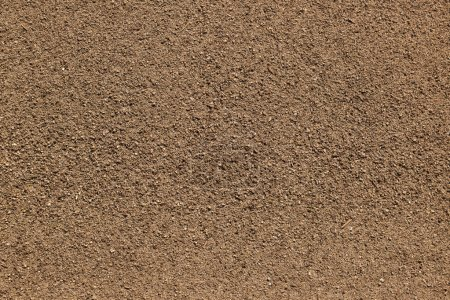 Photo for Macro ground texture or background. - Royalty Free Image
