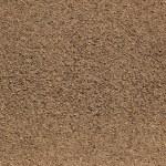 Macro ground texture or background....