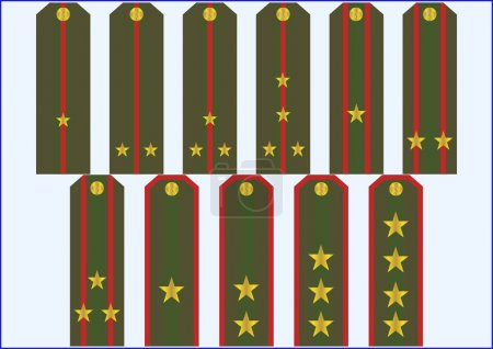 Officer's insignia.