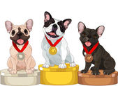 Winners of Dog competition at the podium