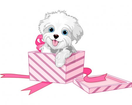 Cute puppy inside gift boxes...
