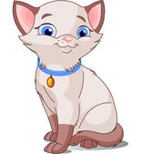 Illustration of Cute Cat pointed Siamese