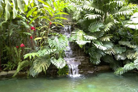 Pool with a waterfall and hot thermal water