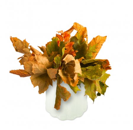 Dried bouquet of autumn leaves in a vase isolated on white backg