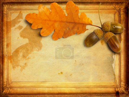 Old grunge paper with autumn oak leaves and acorns