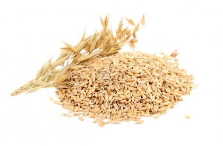 Whole Oats with Ears Isolated on White Background
