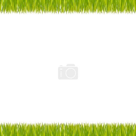 Foto de Hierba verde en el fondo blanco - Imagen libre de derechos