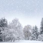 """Постер, картина, фотообои """"Белый лес Рождественский снег"""""""