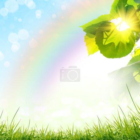Photo pour Le fond de nature vert été - image libre de droit