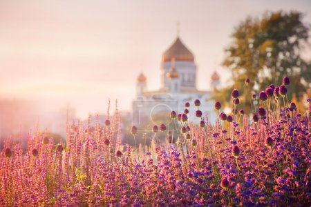 Photo for View of the Cathedral of Christ the Savior through the flowerbeds from Krymskaya naberezhnaya (waterfront), Moscow, Russia - Royalty Free Image