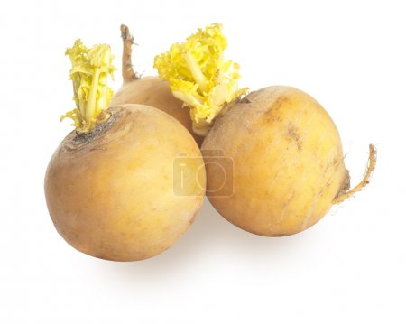 Three yellow turnips