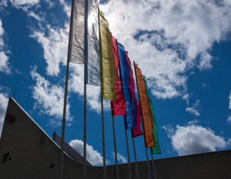 Single colore flags