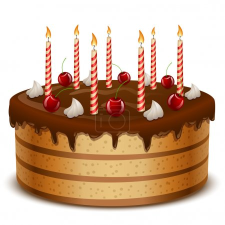 Birthday cake with candles isolated on white background vector i