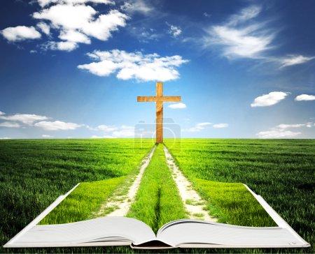 Photo pour Ouvrir la bible avec l'herbe et une façon de marcher vers une croix - image libre de droit