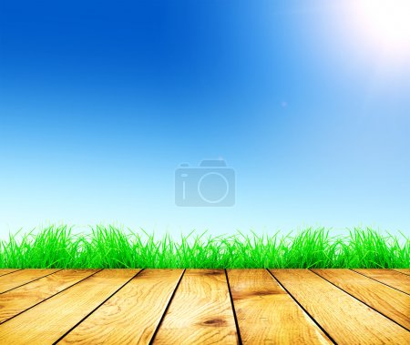 Fresh spring green grass and sunlight and wood floor