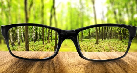 Photo for Clear forest in glasses on the background of blurred forest - Royalty Free Image