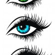 Beautiful woman's eyes. Green, Blue and Brown beau...