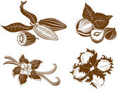 Collection of dessert ingredients Hazelnuts Cocoa beans Vanil
