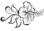 Vector illustration hibiscus flower