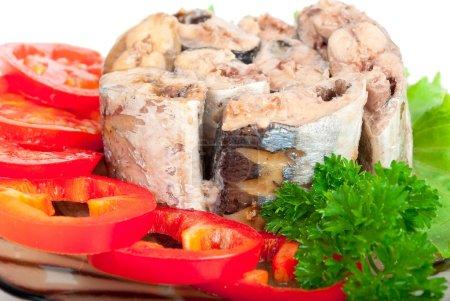 Photo pour Poisson en conserve aux légumes - image libre de droit