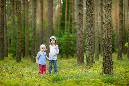 Photo pour Deux adorables petites soeurs randonnée dans une forêt - image libre de droit