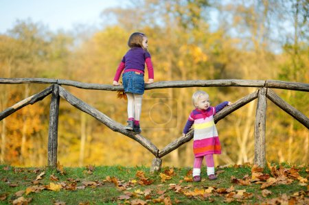 Two little sisters having fun in autumn park