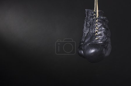 Photo for Boxing Gloves - Royalty Free Image