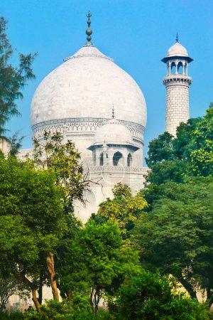 Cupola of Taj Mahal