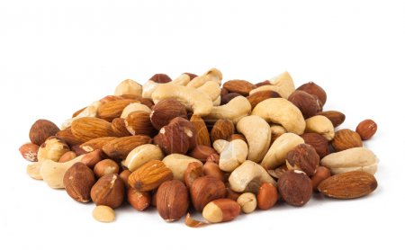 Photo for Background of mixed nuts - hazelnuts, walnuts, almonds, pine nuts - Royalty Free Image