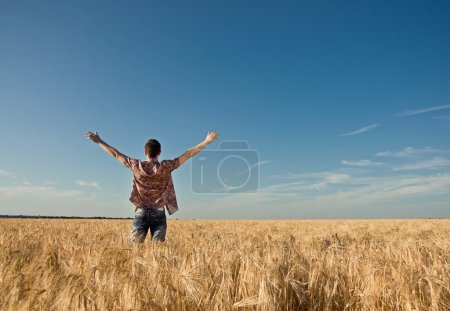 young man in the wheat field