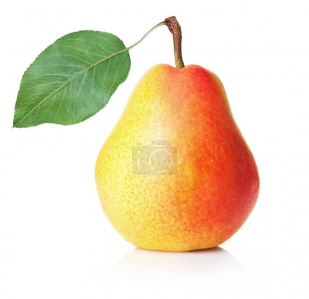 Ripe yellow pear on white background...