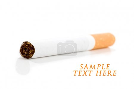 Cigarette on white.