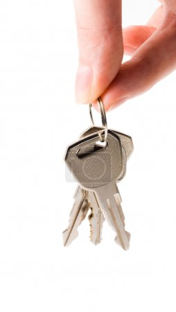 Photo for Human hand with keys on white - Royalty Free Image