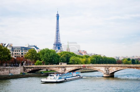 View of the Eiffel Tower and bridge