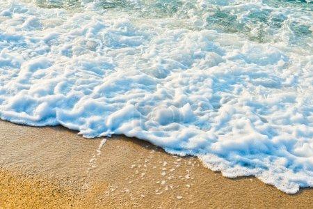Sandy beach of sea