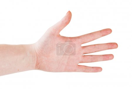 Photo for Hand gesture with 5 fingers - Royalty Free Image