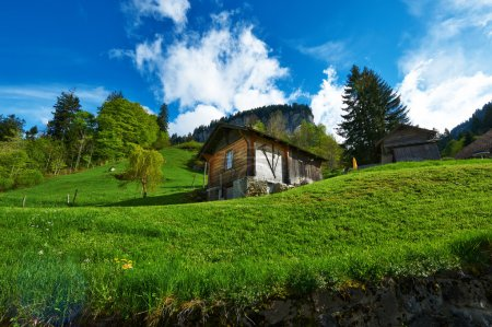 Swiss chalet at Alps