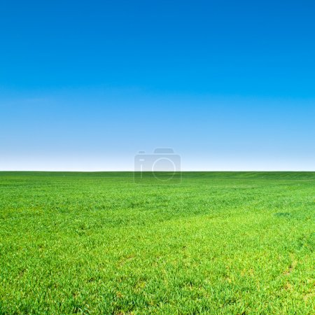Photo for Beautiful landscape, clean blue sky - Royalty Free Image