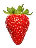 červená jahoda izolovaných na bílém pozadí