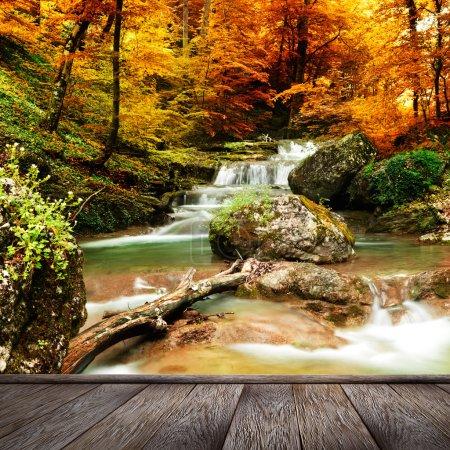 Photo pour Ruisseau d'automne bois avec feuillage d'arbres jaunes et rochers dans la forêt montagne et jetée de bois - image libre de droit