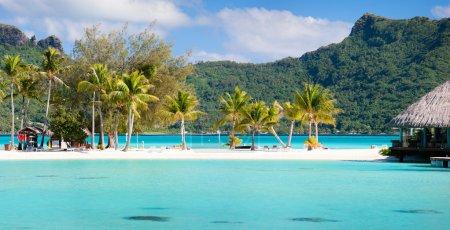 Photo pour Panorama de la plage parfaite avec cocotiers en Polynésie française - image libre de droit