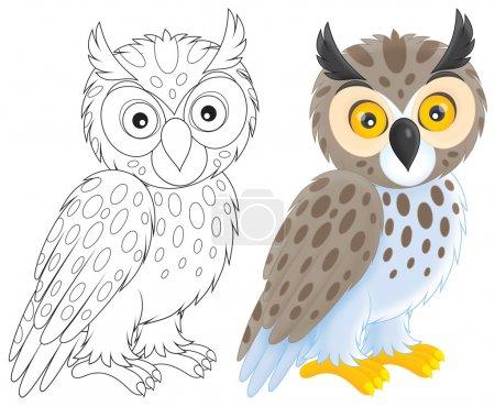 Photo pour Illustrations de contour en noir et blanc sur un fond blanc, la couleur et le hibou moyen-duc - image libre de droit