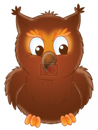 Brown Owl Facing Front Its Eyes