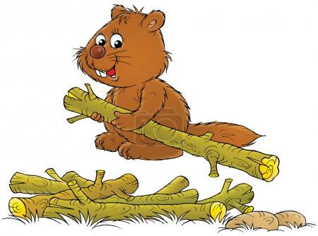 Photo pour Heureux castor brun portant une bûche d'une pile, sur un fond blanc . - image libre de droit